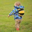 Detský batoh LittleLife Toddler Bee