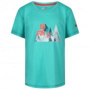 Detské tričko Regatta Alvarado IV Ceramic