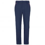 Dámske nohavice Salewa W Terminal Pant
