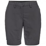 Dámske kraťasy Salewa Puez Dry W Shorts