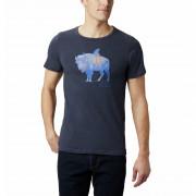 Pánske tričko Columbia M Piney Falls Graphic Tee
