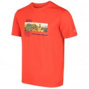 Dámske tričko Regatta Fingal V CL