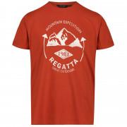 Pánske tričko Regatta Cline IV